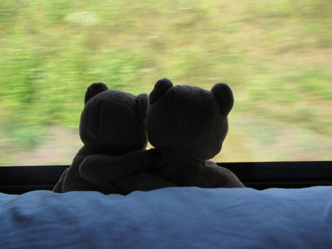 Carlos and Fransesca in the train
