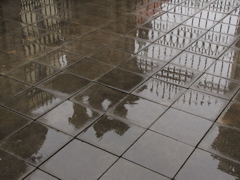 Wet tiles reflecting buildings
